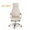 AB-589A_