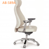 AB-589A_(1)